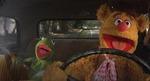 muppetstakethefarm Avatar